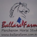 ballara-farm-horse-float-stickers-10