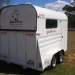 ballara-farm-horse-float-stickers-11