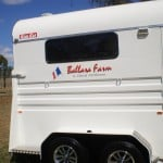 ballara-farm-horse-float-stickers-16