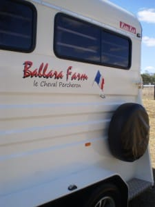 ballara-farm-horse-float-stickers-17
